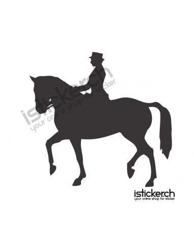 Reiten & Pferdesport Reiten & Pferdesport 3
