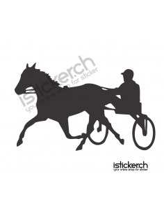 Reiten & Pferdesport 4