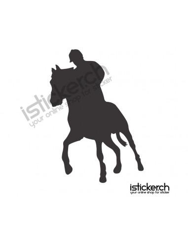 Reiten & Pferdesport 6