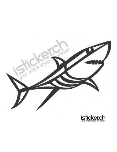 Haifisch 5
