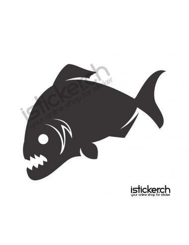 Fische & Haie Piranha