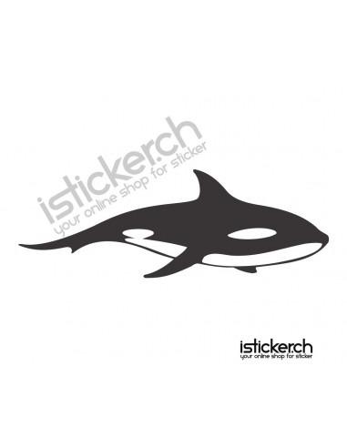 Fische & Haie Walfisch 2