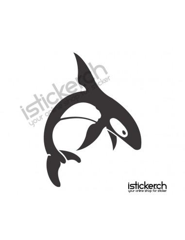 Fische & Haie Delfine 5
