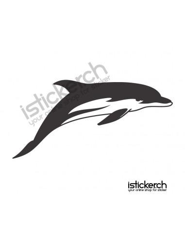 Fische & Haie Delfine 6