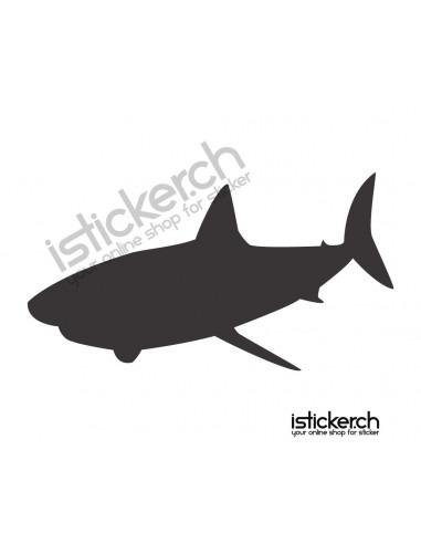 Fische & Haie Haifisch 11
