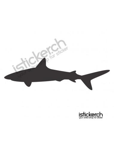 Fische & Haie Haifisch 13