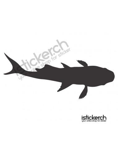 Fische & Haie Koifisch 3
