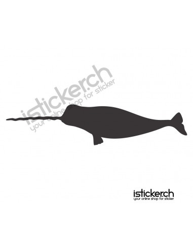 Fisch 11