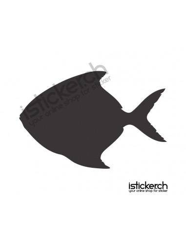 Fische & Haie Fisch 12