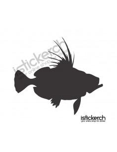 Fisch 14