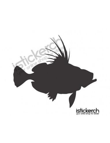 Fische & Haie Fisch 14