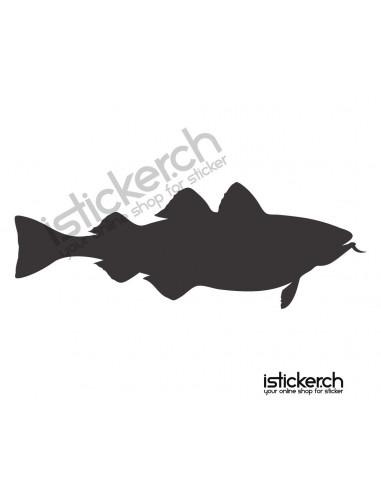 Fische & Haie Fisch 17