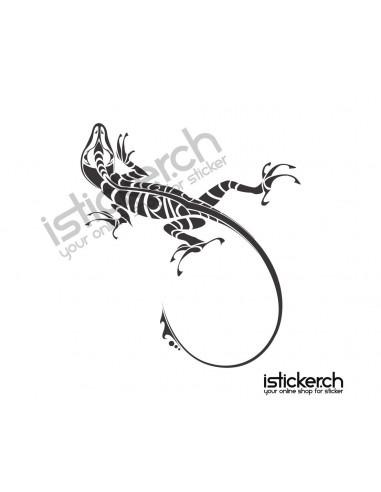 Gecko 9