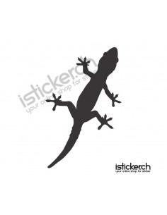 Gecko 11