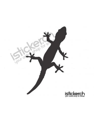 Gecko Gecko 11
