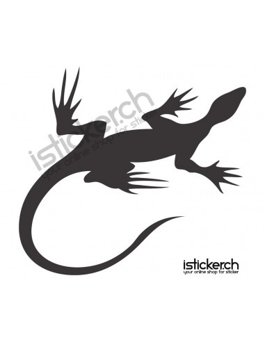 Gecko Gecko 15