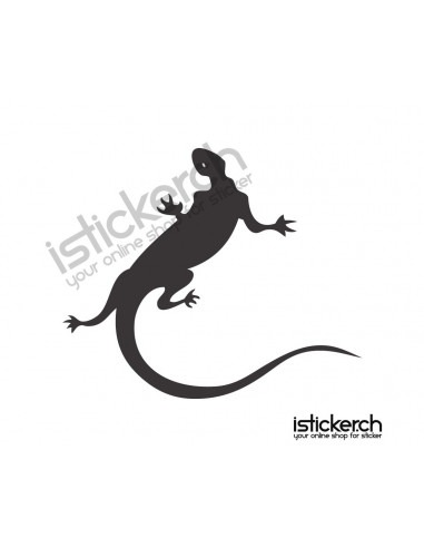 Gecko 16