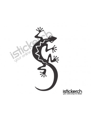 Gecko 20