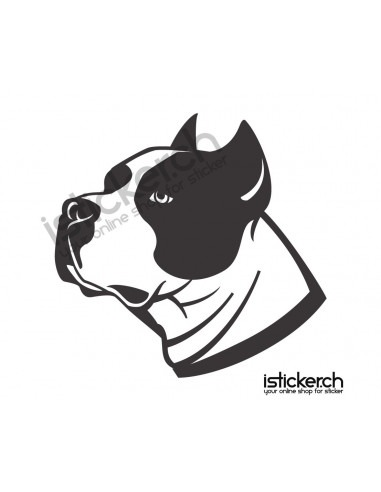 Hunde Pit Bull 1