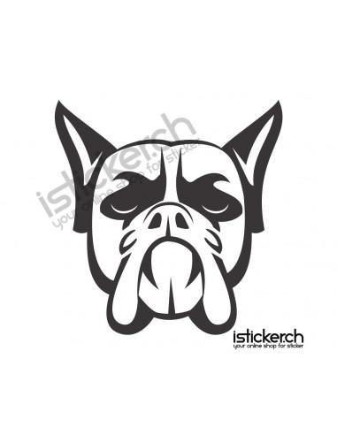 Hunde French Bulldog