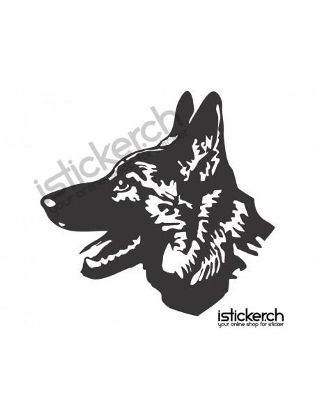 Schäferhund 1
