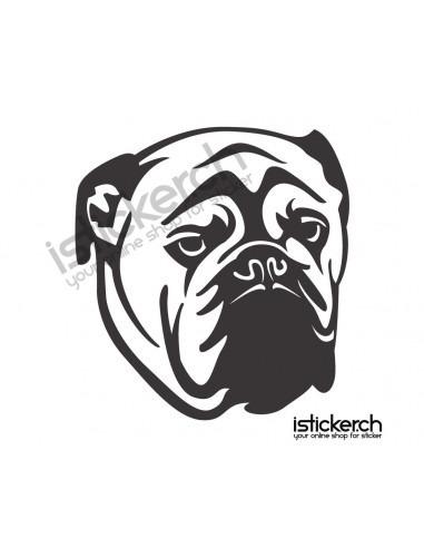 Hunde English Bulldog 1