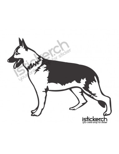 Schäferhund 3