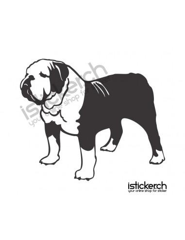 Hunde English Bulldog 2