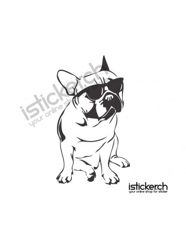 French Bulldog Cool