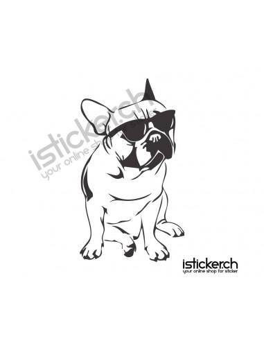 Hunde French Bulldog Cool