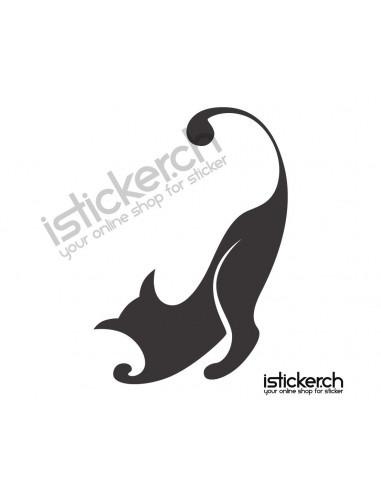 Katze 4