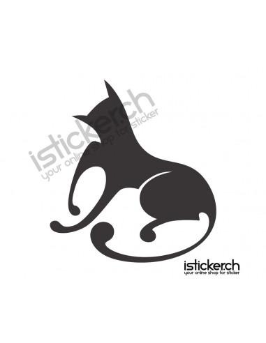 Katzen Katze 5