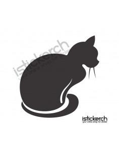 Katze 7