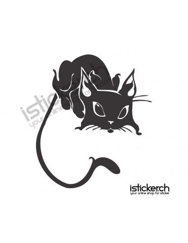 Katzen Katze 25