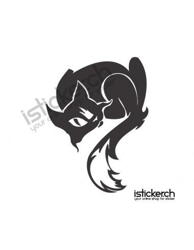 Katzen Katze 26