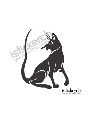 Katzen Katze 27
