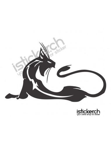 Katze 30