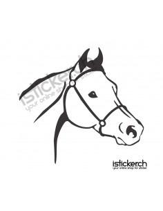 Pferdekopf 1