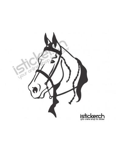 Pferdekopf 4
