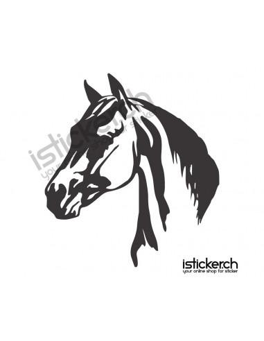 Pferdekopf 6