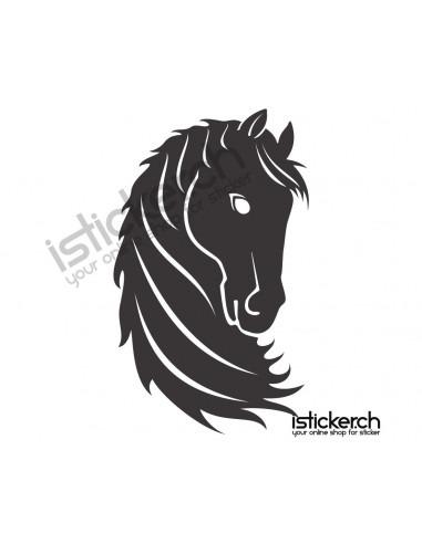 Pferde Pferdekopf 13