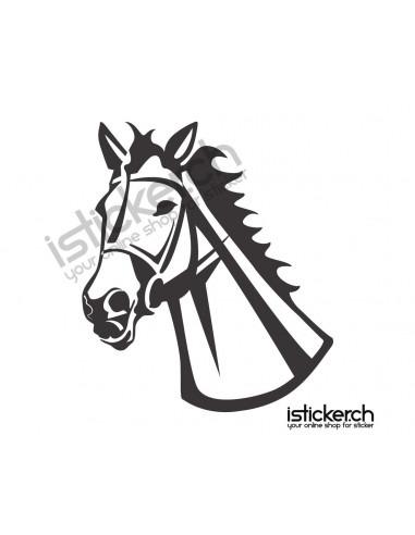 Pferde Pferdekopf 14