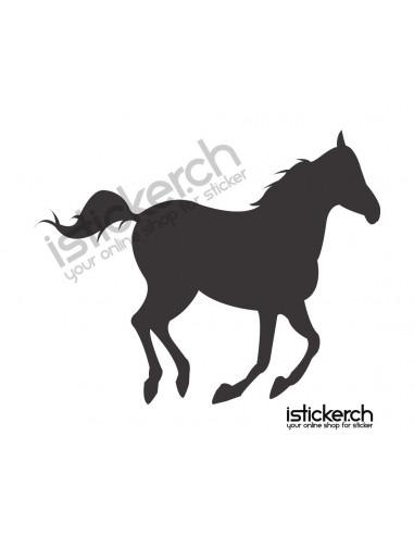 Pferde Pferd 4