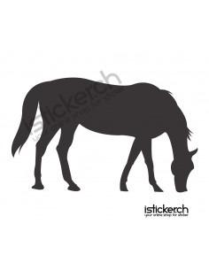 Pferd 5
