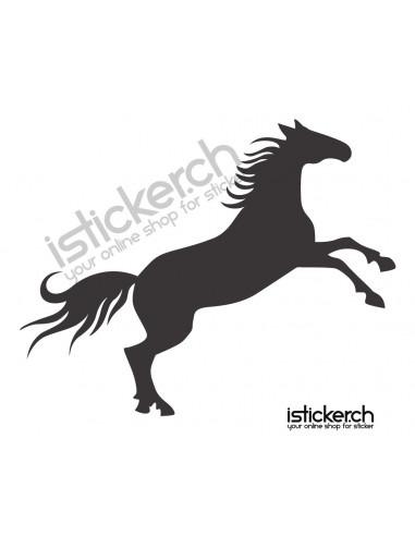 Pferde Pferd 7