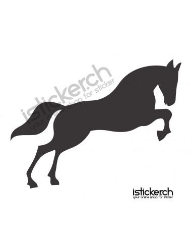 Pferde Pferd 12