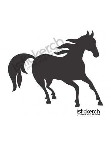 Pferd 13