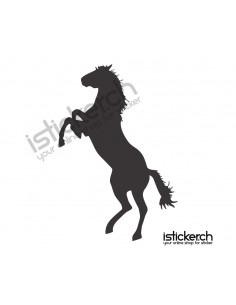 Pferd 14