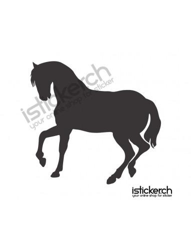 Pferd 22