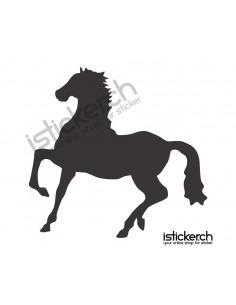 Pferd 23